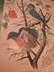 "Arthur Singer ""Birds of North America Series"" Botanical Prints"