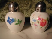 Vintage Fine China Salt & Pepper Thomas Germany